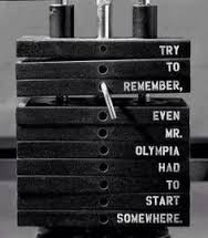 The Gym Newbie