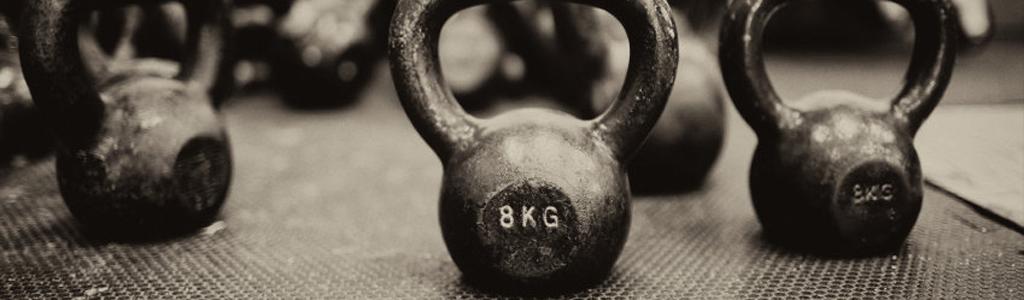 weights1024x300